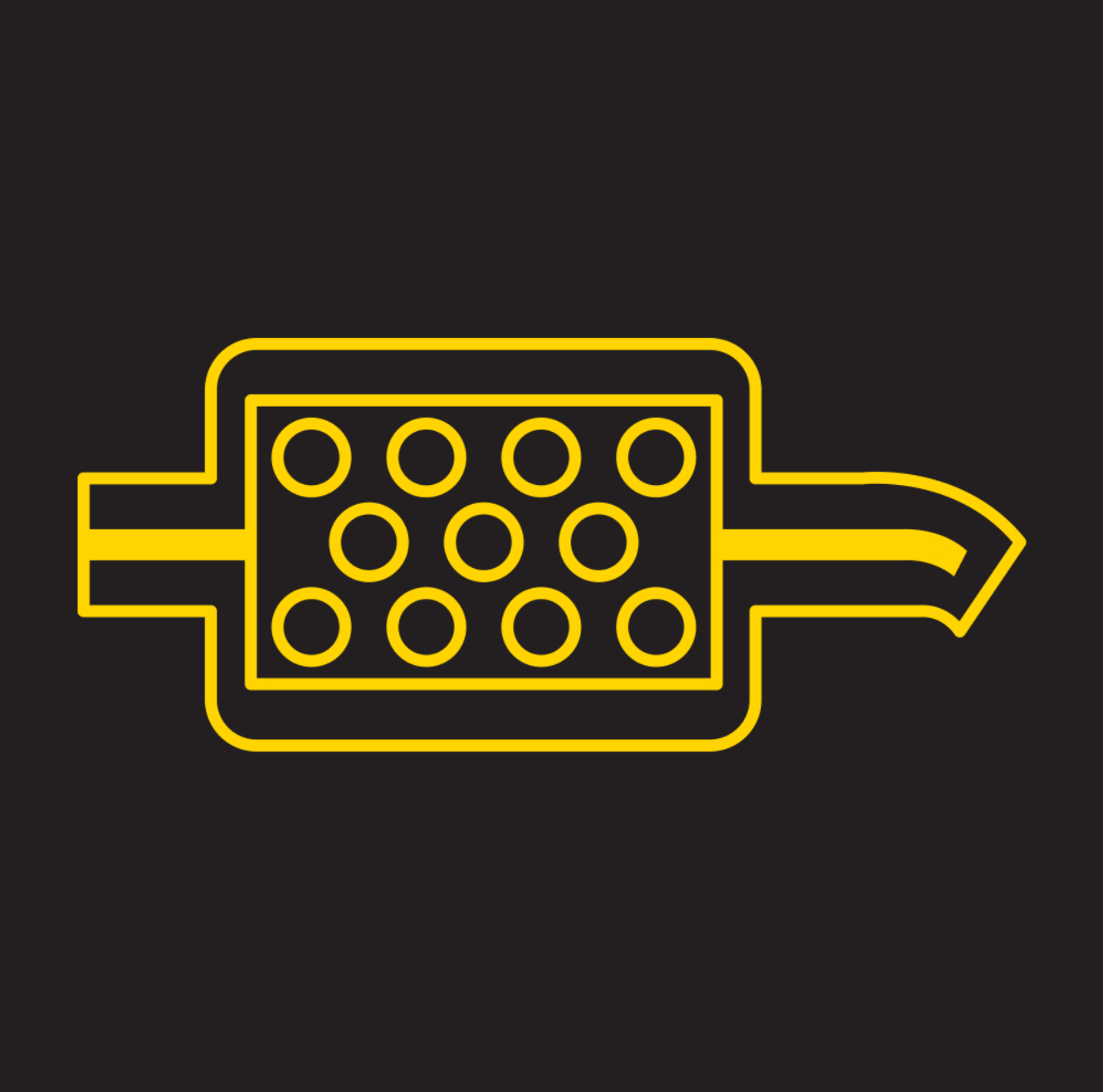 Icon Showing the DPF System Warning Light